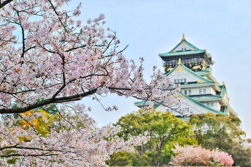 Garden-Inspired-by-Travel-acw